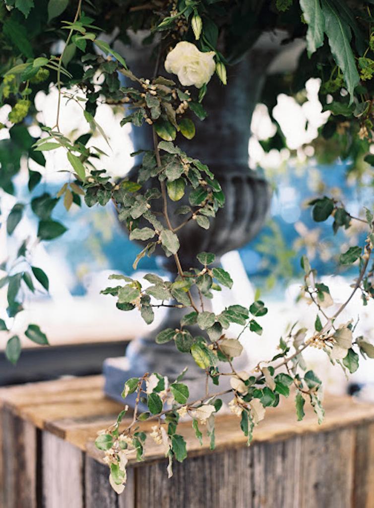 Florals by Blossoms Events. Photograph by Tec Petaja.