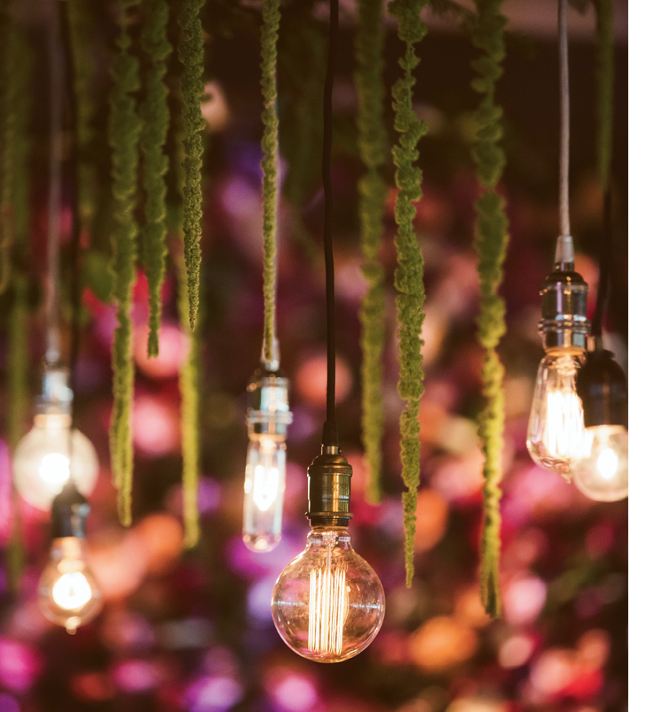 Inside the Pavilion, rows of naked Edison bulbs dangled from greenery, hanging amaranthus, and vintage roses.   <i>Amelia + Dan Photography</i>