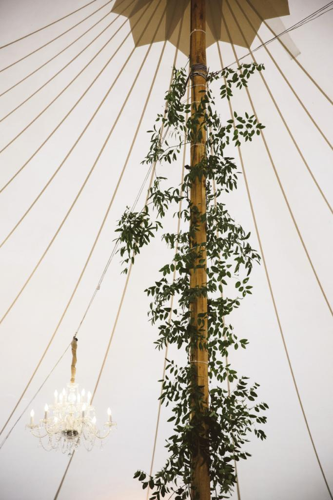 Tent from Sperry Tents Southeast. Greens by Nancy's Exotic Plants. Wedding design by Fox Events. Lighting by Innovative Event Services. Image by amelia + dan photography.