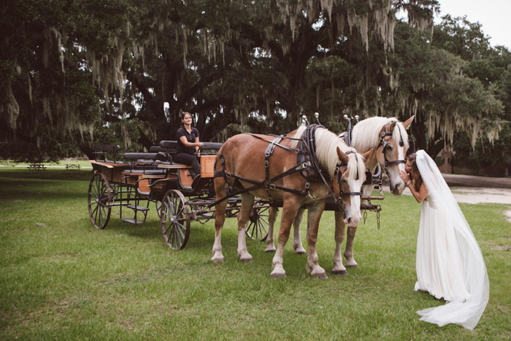 Bride's gown by Jenny Packham from White on Daniel Island. Image by amelia + dan photography at Middleton Place.