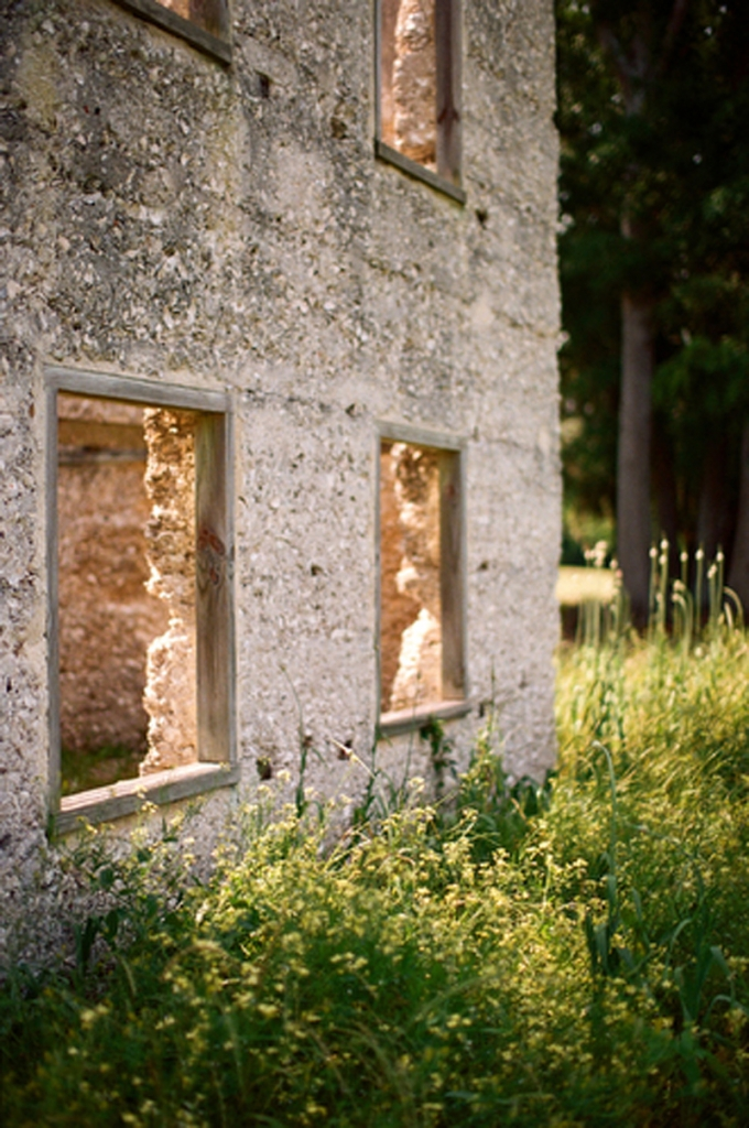 Image by Elisabeth Millay Photography at the Spring Island Tabby Ruins.