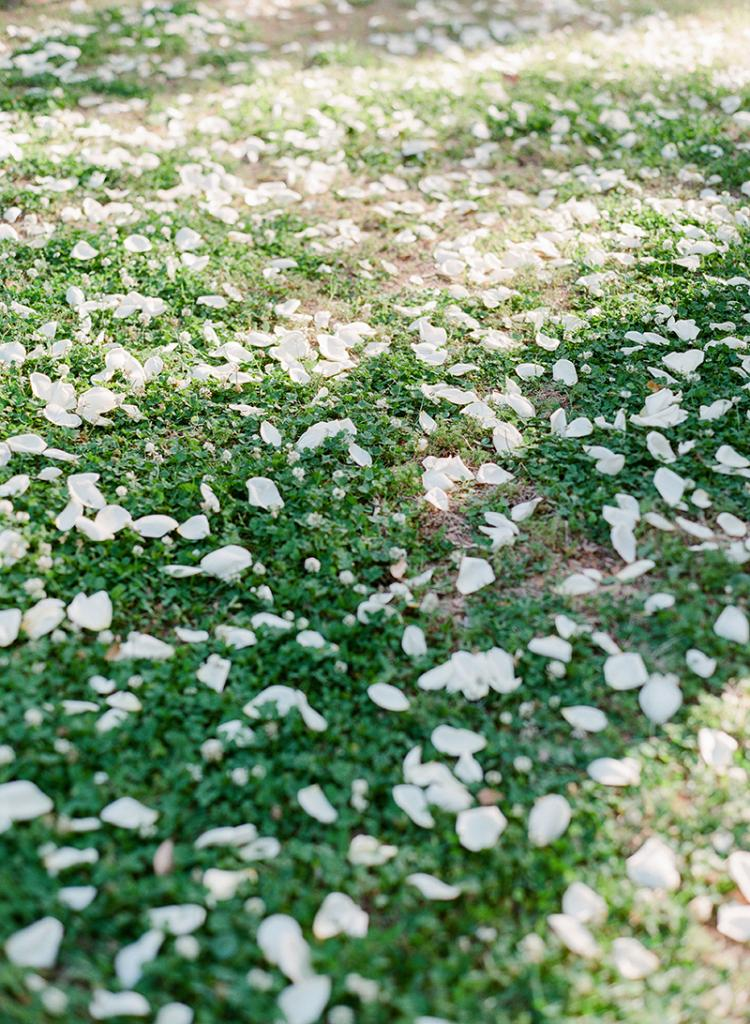 Have a blast. A path of white petals tossed in the grass marked the aisle in simple elegance.