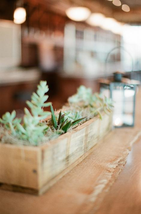 BOX SET: Succulents tucked into wooden window box centerpieces can accent your home long after the reception.