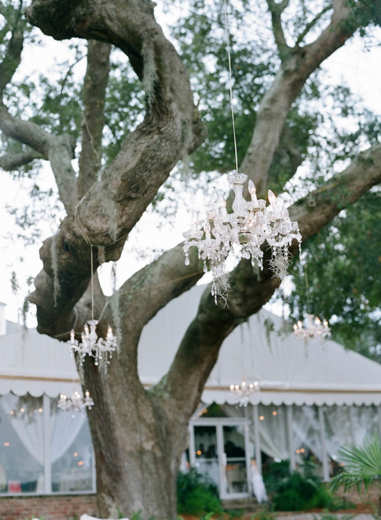 Lighting by Production Design Associates. Wedding and floral design by Tara Guérard Soirée. Photograph by Elizabeth Messina at Lowndes Grove Plantation.