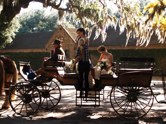 16)Belgian draught horses pull wagons of visitors—and sometimes bridal parties—across the grounds at Middleton Place.