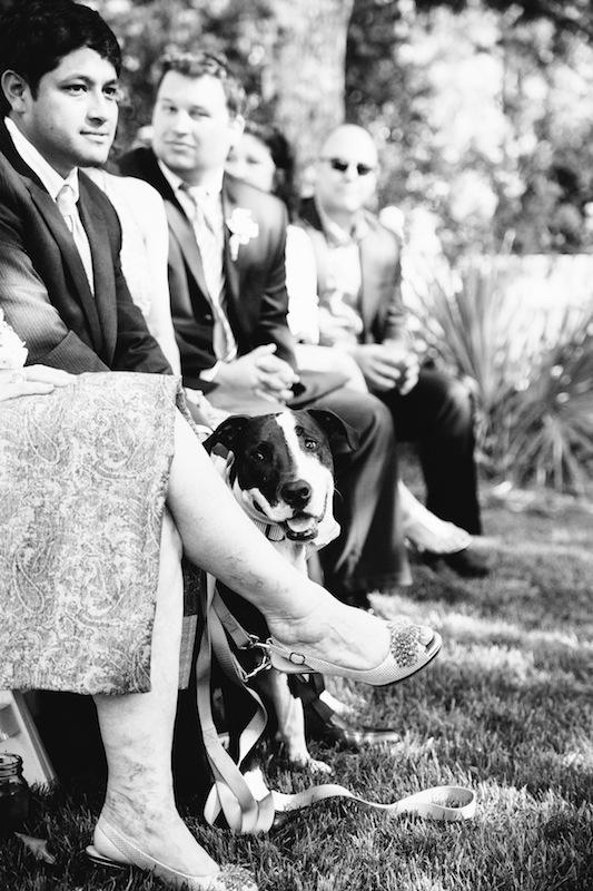 Image by Dana Cubbage Weddings.