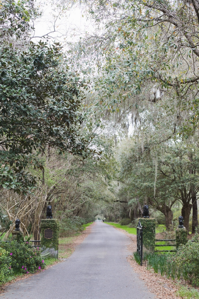 Image by Clay Austin Photography at Magnolia Plantation & Gardens.