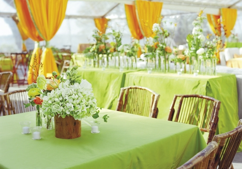 CITRUS BLEND: Curtains of vivid orange and table linens of lime green created a festive backdrop that was framed with a clear-top tent, which kept the space airy.