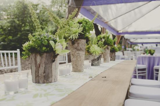 STARK CONTRAST: For variation, planner Melissa Barton paired pale and dark green succulents and placed them along the patterned white-and-green table runner.