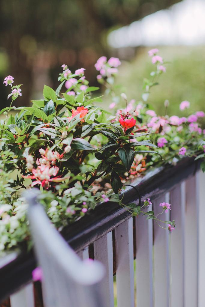 HANGING GARDEN: Colorful floral arrangements hung from porch railings at the Governor Thomas Bennett House.
