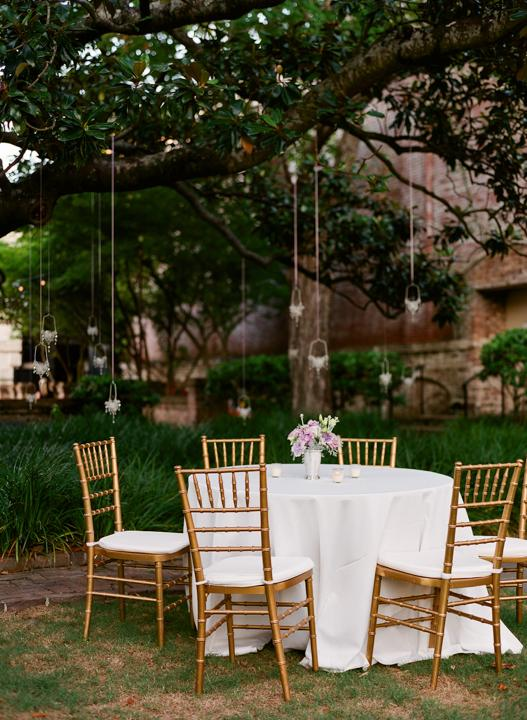 FAIRY LIGHTS: Tiny lanterns suspended from the garden's ancient oaks lent a magical aura to the reception.