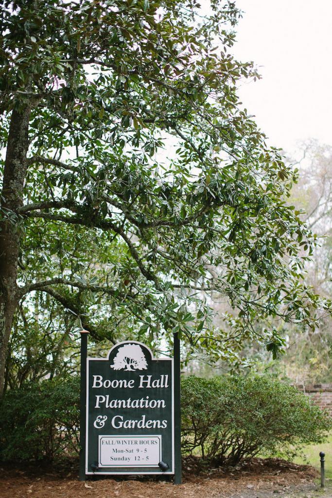 Image by Julia Wade Photography at Boone Hall Plantation.
