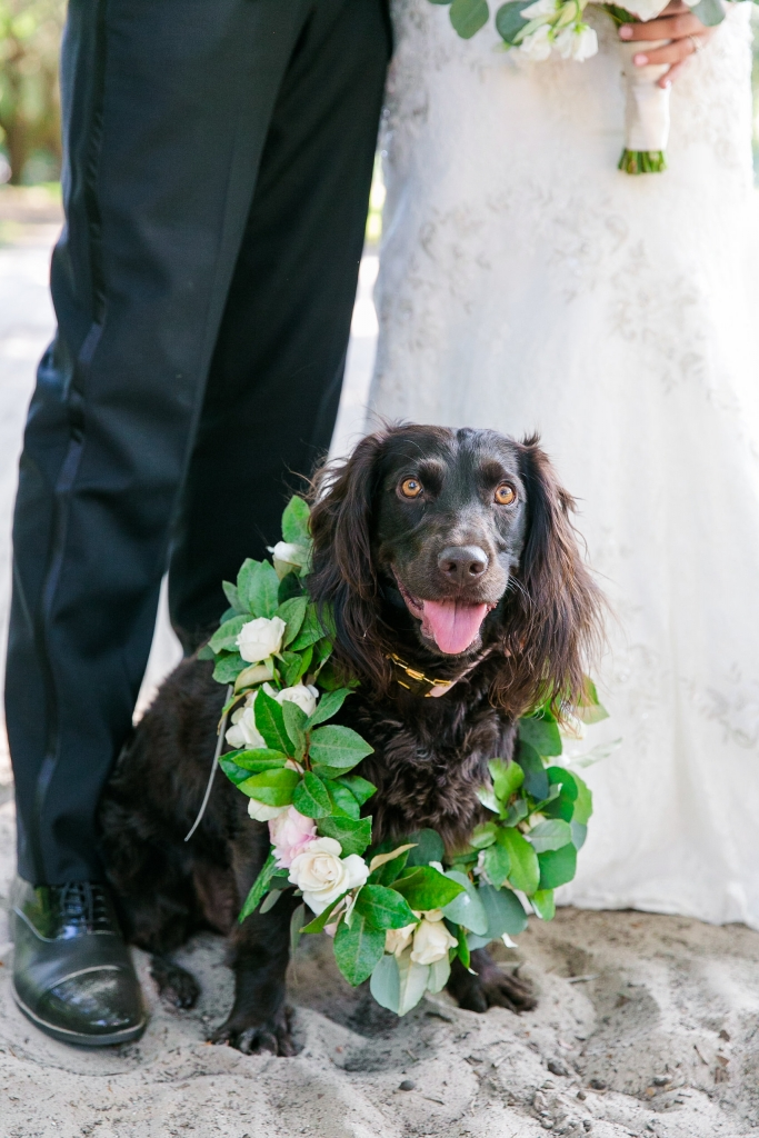 <i>Photograph Dana Cubbage Weddings</i>