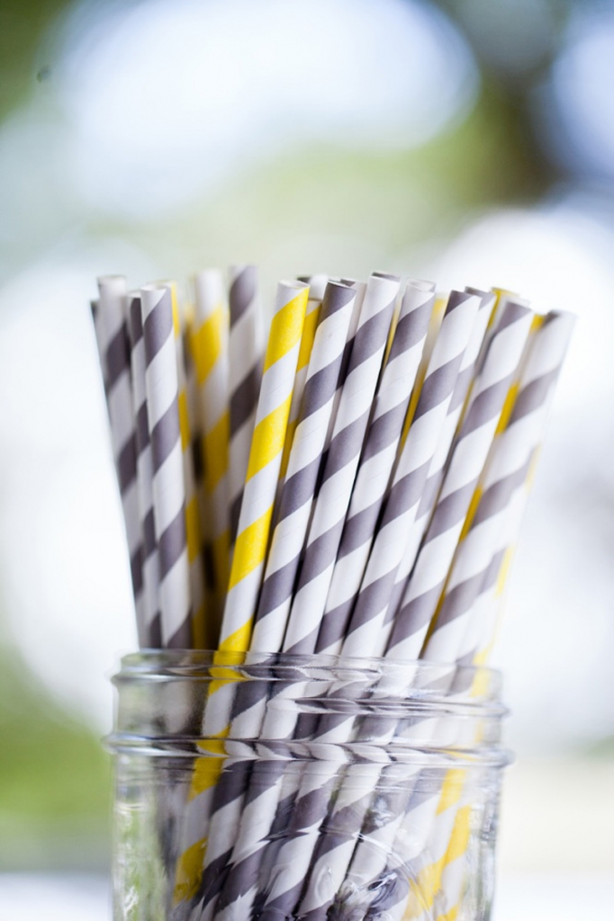 Paper straws from Etsy shop Cherished Blessings. Image by Hunter McRae Photography.