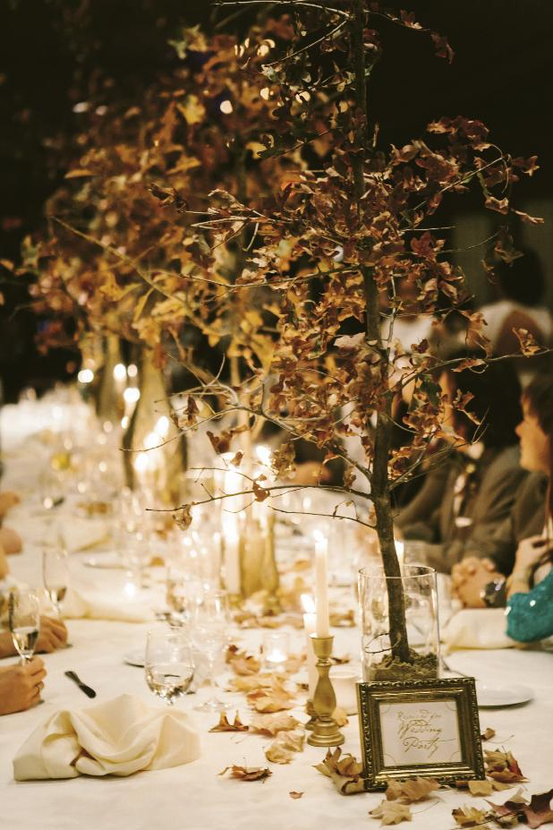Wedding design, florals, and photograph by Mark Williams Studio.